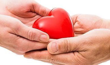 Proyecto de Ley – Régimen de protección integral para personas transplantadas