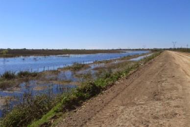 Proyecto de Resolución – Declarar su preocupación por el pobre desempeño y futuro incierto del Consejo Regulador del Uso de Fuentes de Agua (CORUFA).