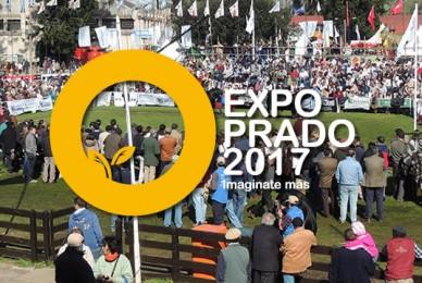 Pedido para que se retire del stand del Reino Unido en EXPO PRADO, realizada en la ciudad de Montevideo, República Oriental del Uruguay